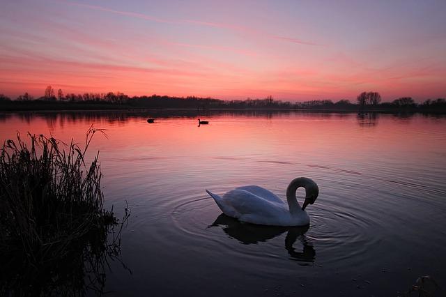 sunset-1060306_640